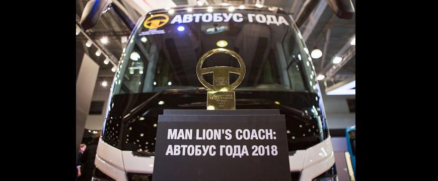 Lion´s Coach