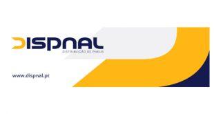 Dispnal Pneus moderniza logotipo