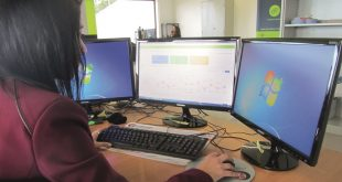 Novo serviço Skills Analysis da Rosete