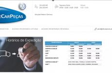 """Plataformas B2B: Pedro Rodrigues, da AlecarPeças """"Temos uma plataforma para retalhistas e outra para oficinas"""""""