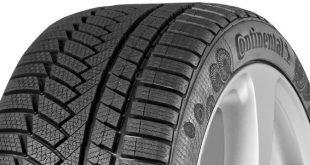 """Continental incentiva """"dente de leão"""" para a produção de pneus"""