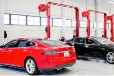 Quer trabalhar na Tesla? A marca está a recrutar para as oficinas